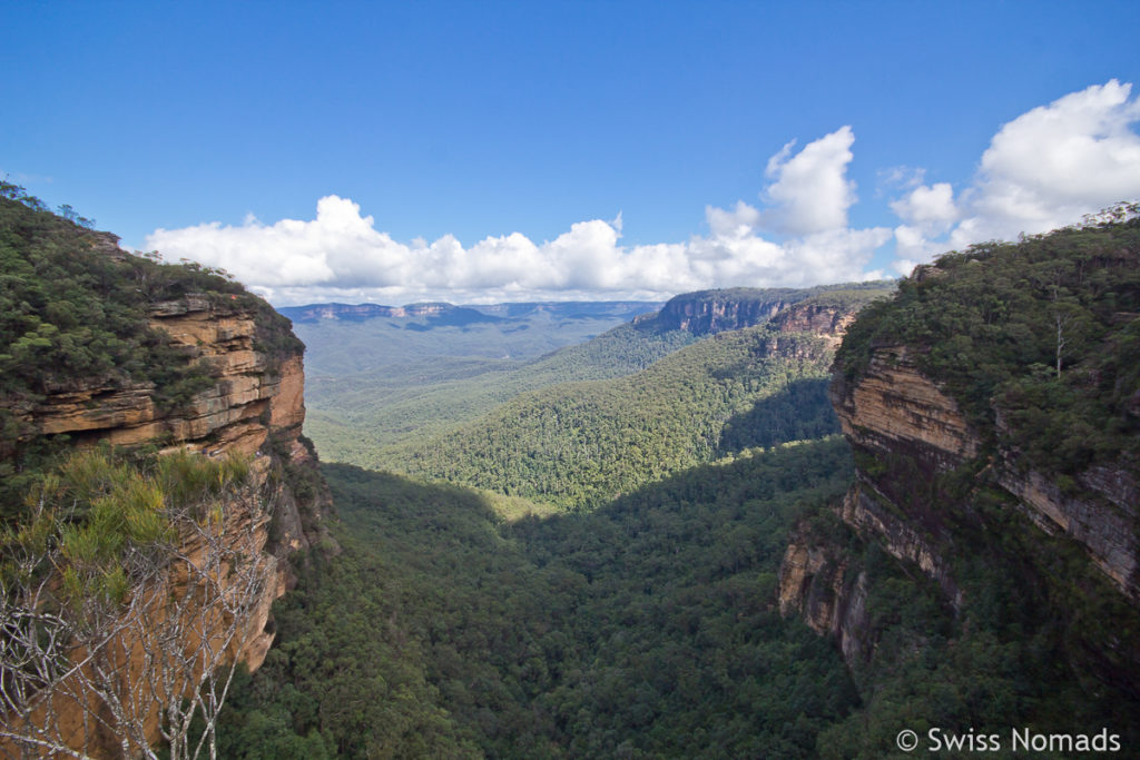 Das Valley of the Waters im Blue Mountains Nationalpark