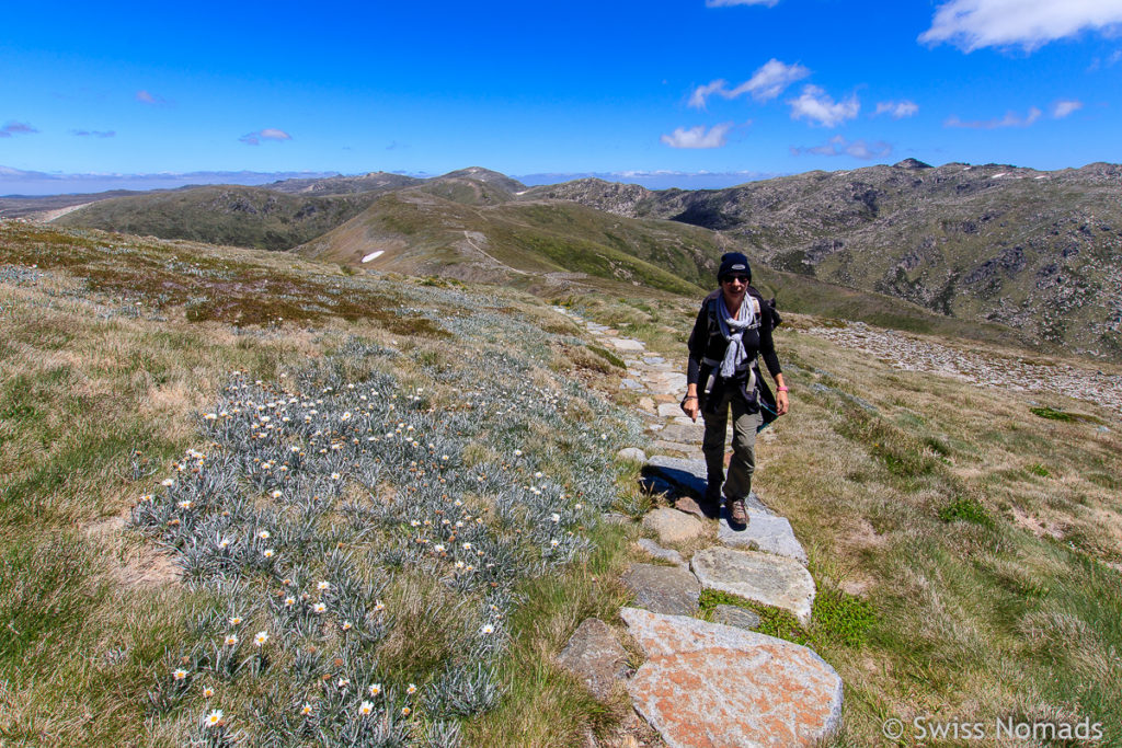 Wanderung vom Mount Kosciusczko zum Carruthers Peak in Austeralien