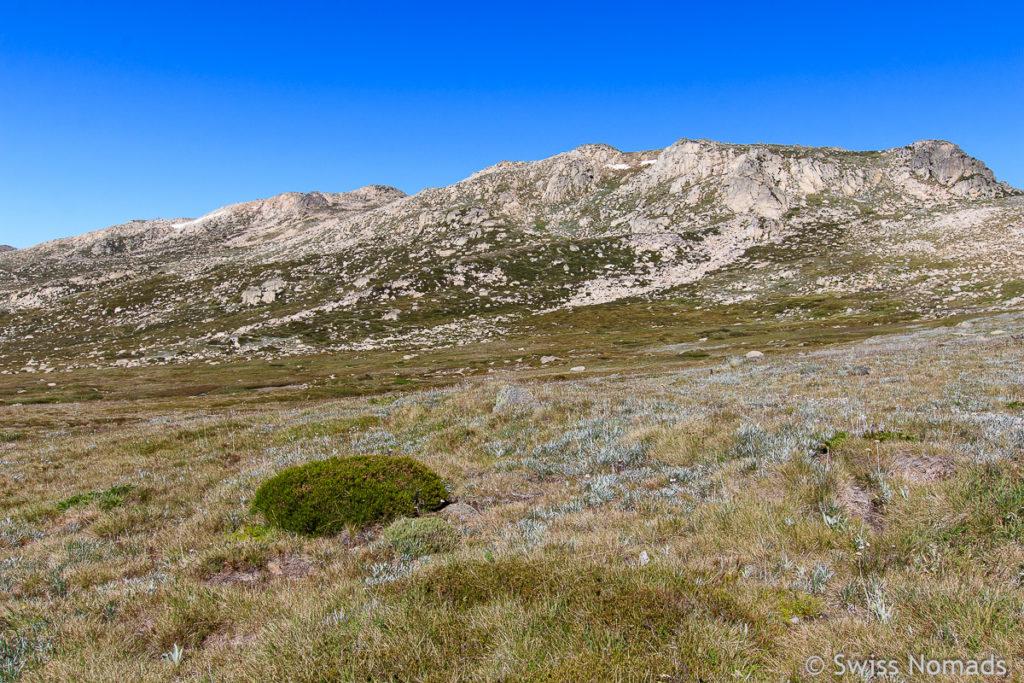 Berg Landschaft beim Mount Kosciuszko in Australien