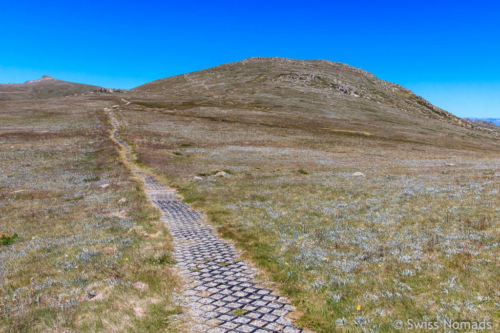 Main Range Track zum Mount Kosciuszko in Australien