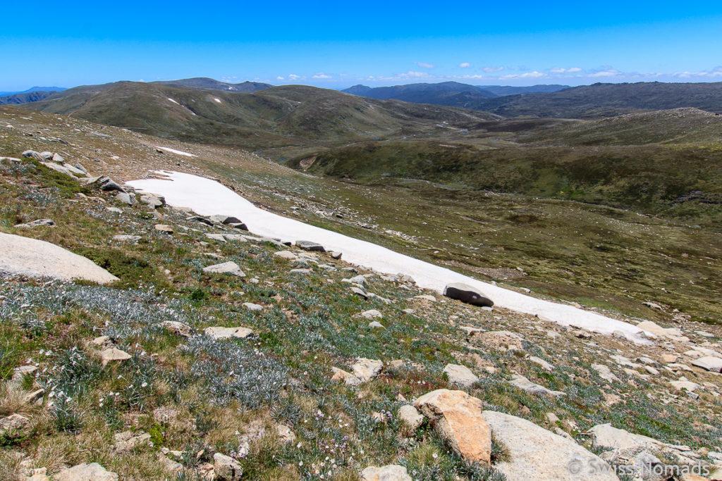 Schneefeld entlang des Main Range Tracks zum Mount Kosciuszko