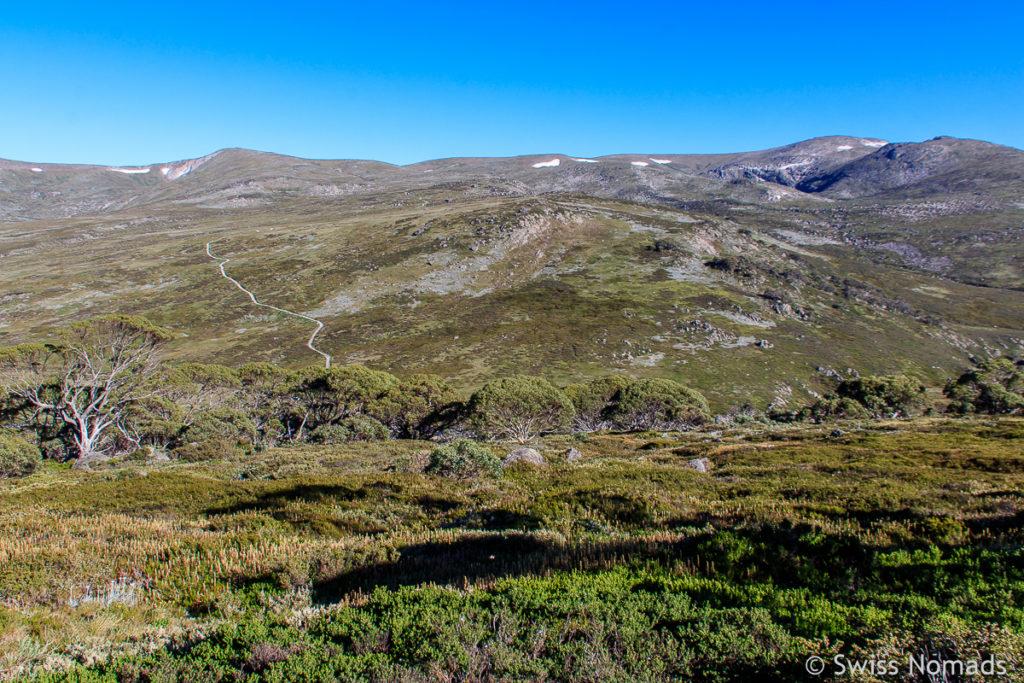 Aussicht vom Wanderweg auf den Mount Kosciuszko in Australien