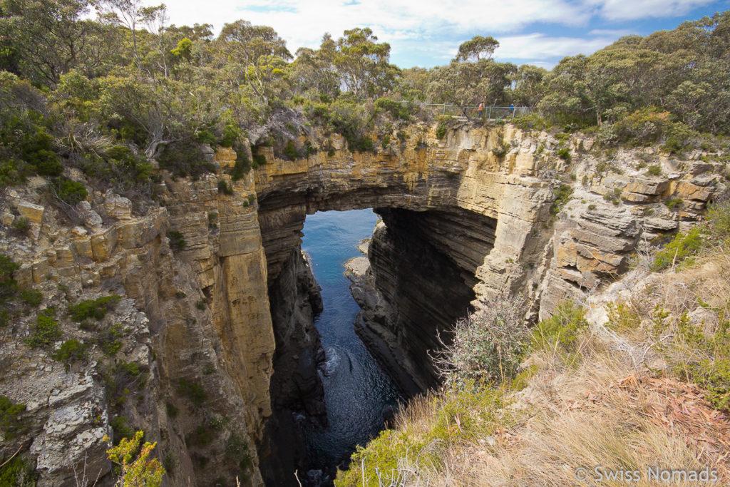 Der Tasman Arch auf dem Tasmanien Roadtrip