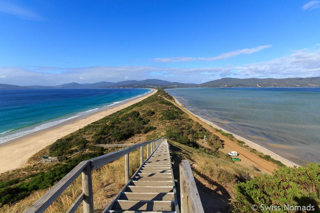 Aussichtspunkt The Neck auf Bruny Island in Tasmanien