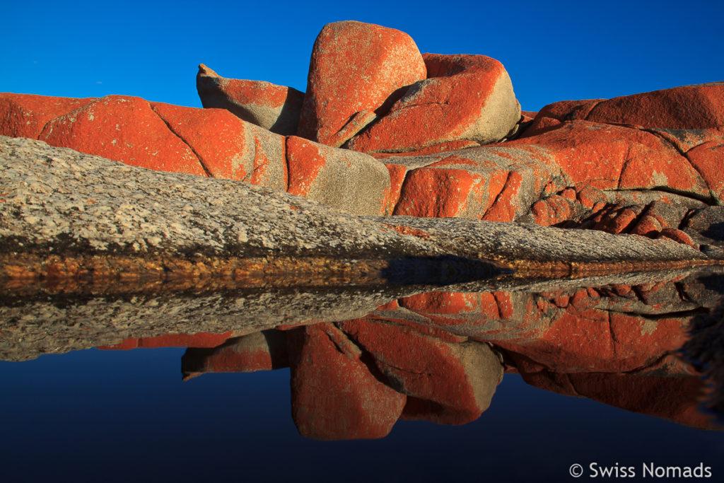 Die Bay of Fires ist eine der Top 10 Tasmanien Sehenswürdigkeiten