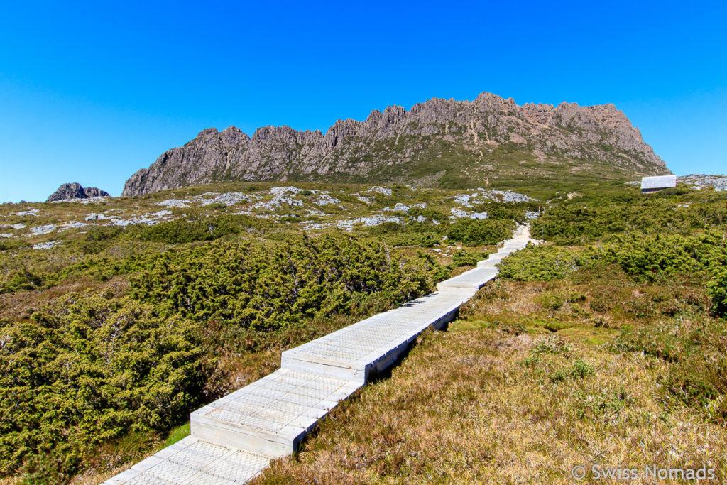 Die schöne Wanderung auf den Gipfel des Cradle Mountain in Tasmanien