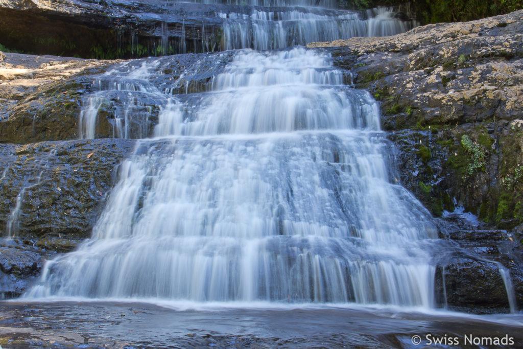 Die Wanderung zu den schönen Lady Barron Falls im Mt Field Nationalpark