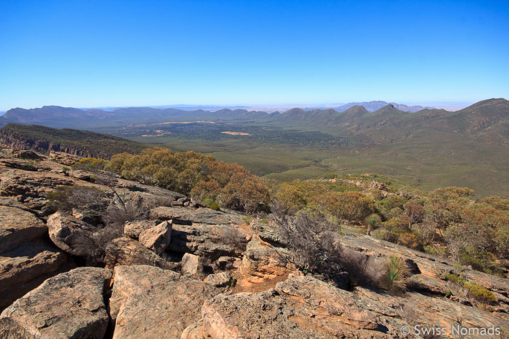 Der Ikara Flinders Ranges Nationalpark in Australien
