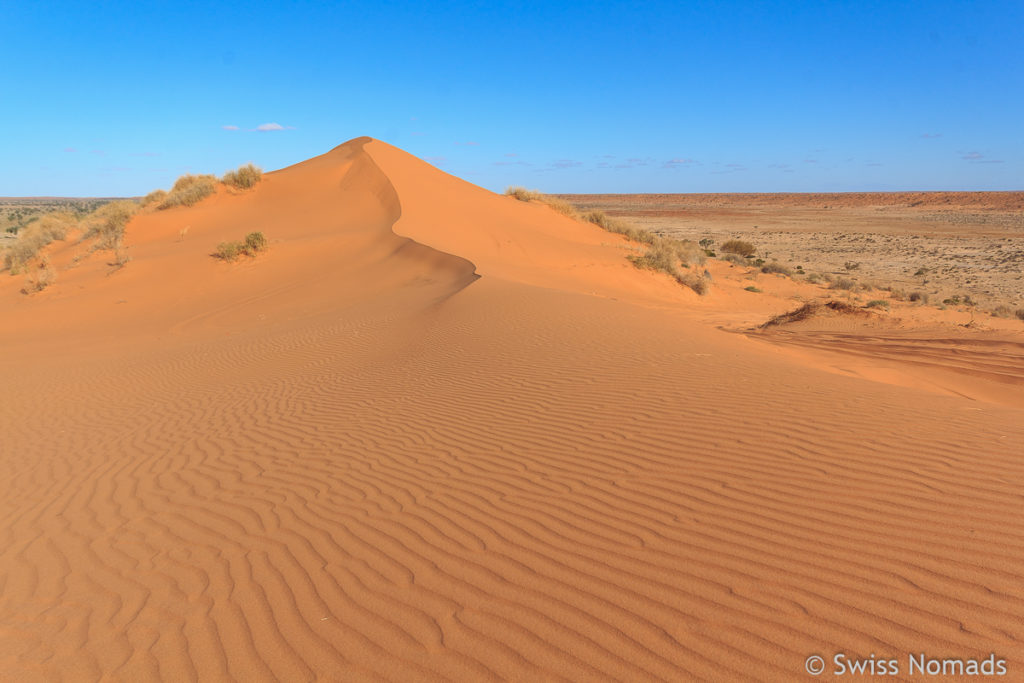 Der Simpson Desert Nationalpark in Australien