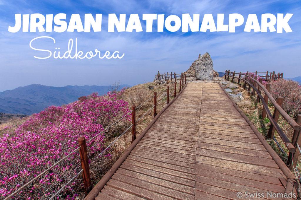 Wandern im Jirisan Nationalpark in Südkorea