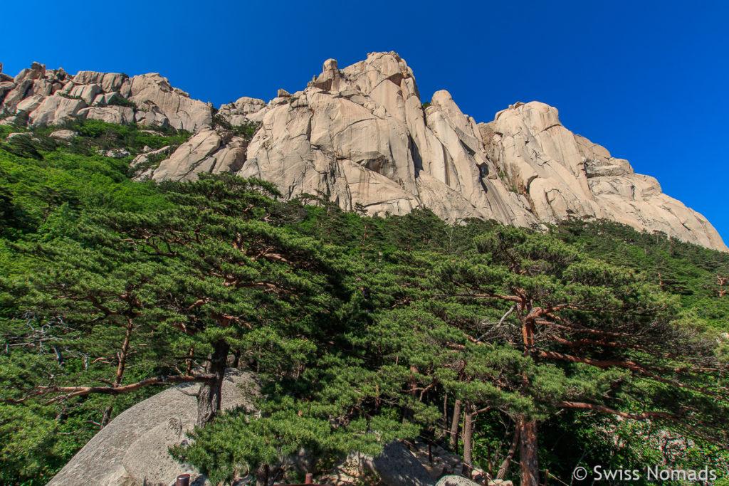 Die markante Felswand Ulsanbawi im Seoraksan Nationalpark