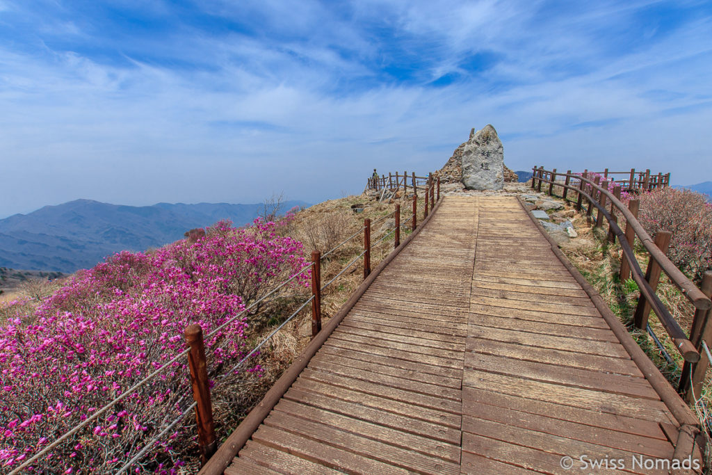 Der Jirisan Nationalpark ist eine Top Südkorea Sehenswürdigkeit