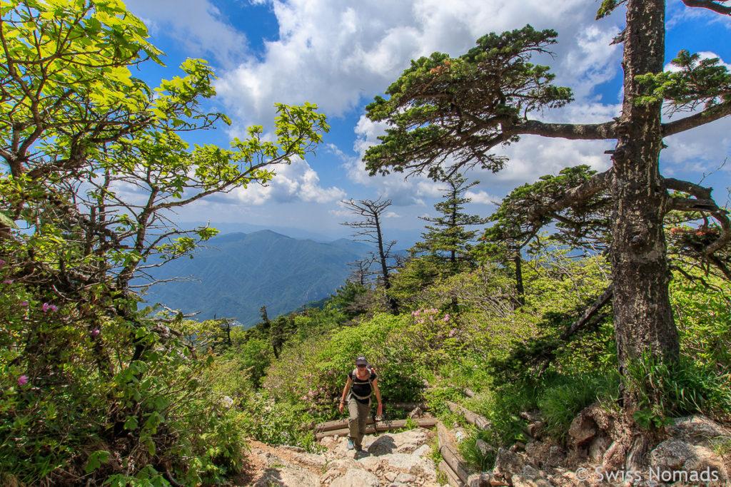 Auf der Osaek Route zum Dacheongbong Peak