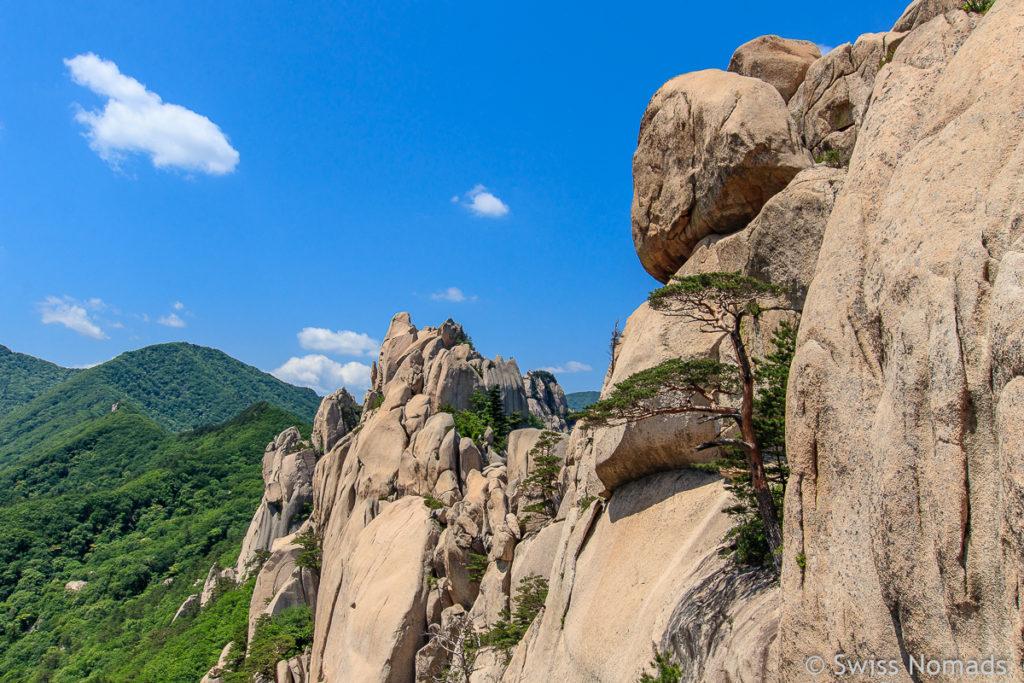 Der Seoraksan Nationalpark ist einer der schönsten Nationalparks in Südkorea
