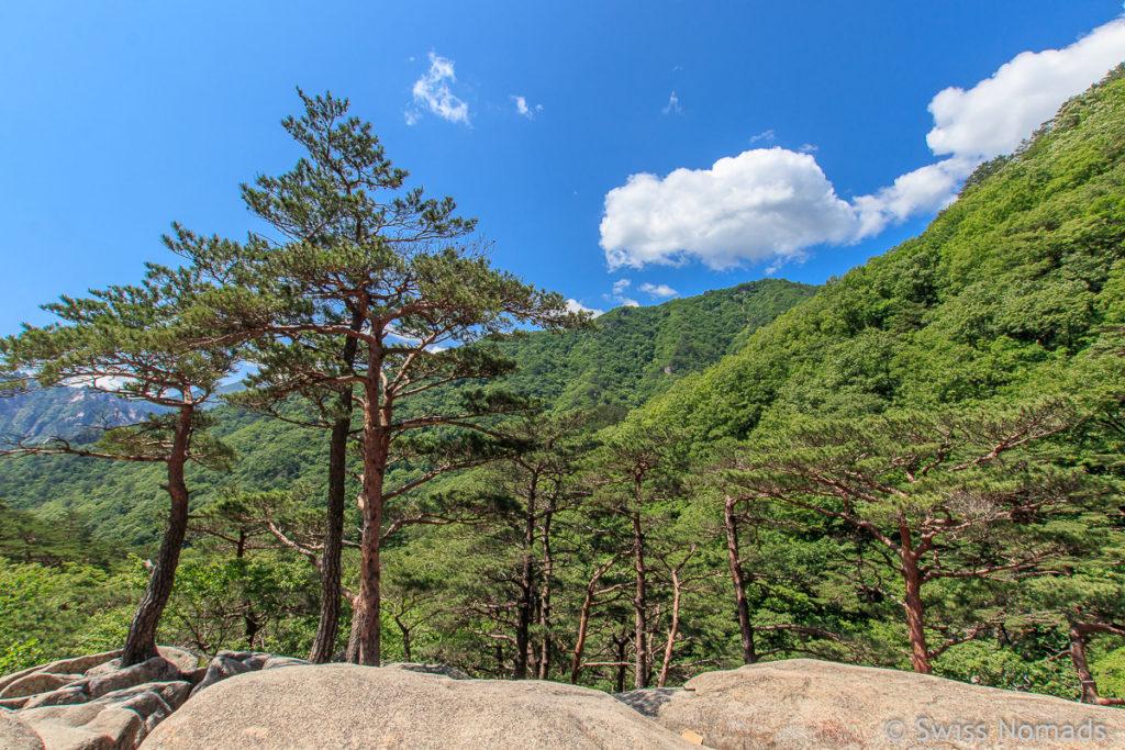 Aussicht entlang der Wanderung zum Ulsanbawi im Seoraksan Nationalpark
