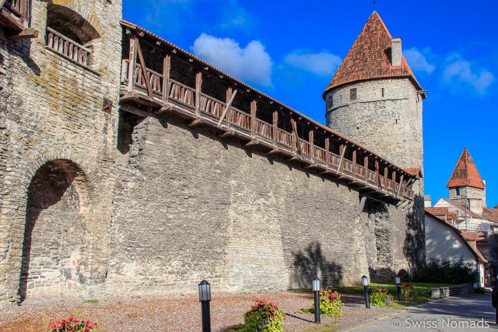 Stadtmauer Tallinn Estland