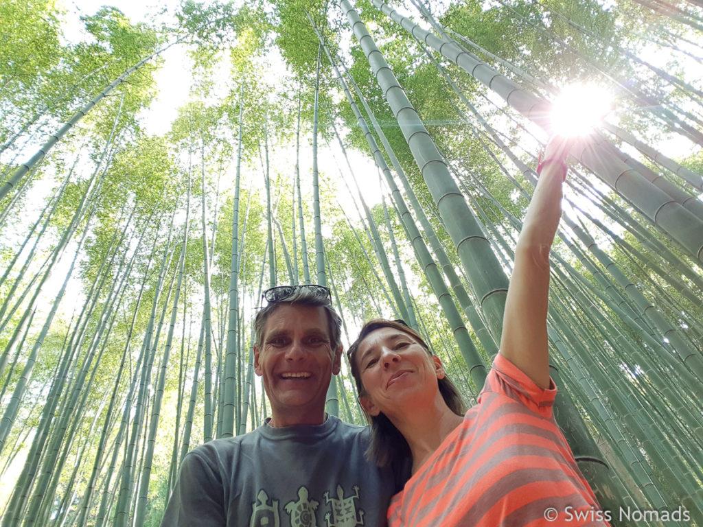 Bambuswald in Südkorea