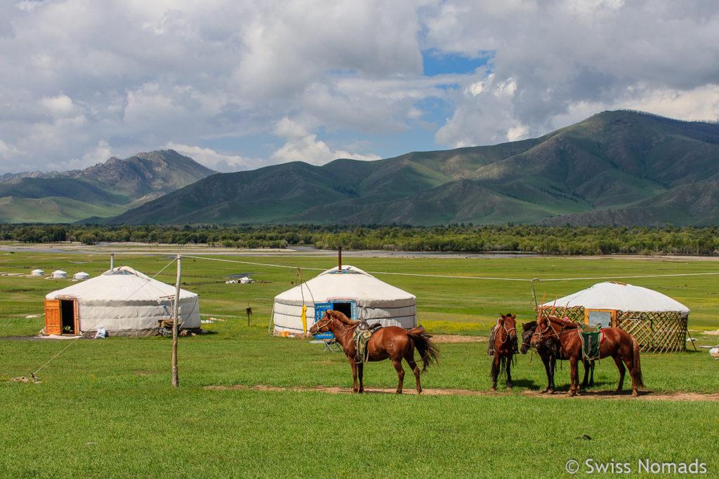 Jahresrückblick 2018 Mongolei