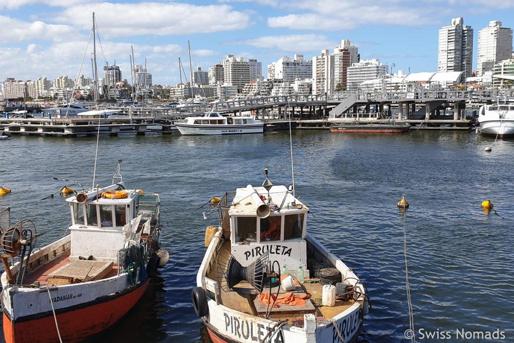 Hafen in Punta Del Este in Uruguay
