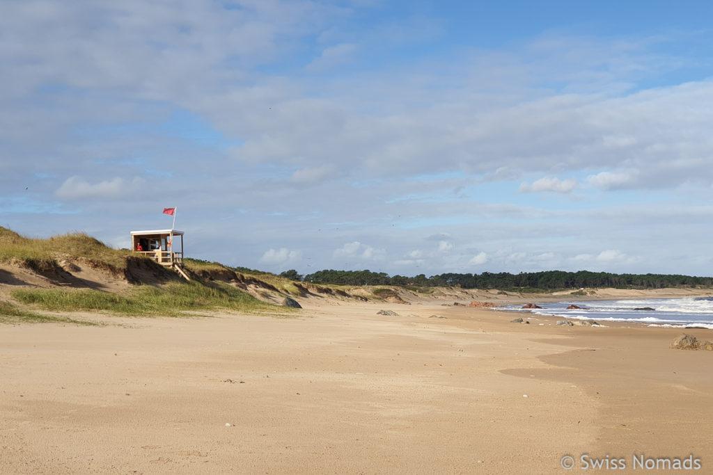 Unsere ersten Eindrücke aus Uruguay