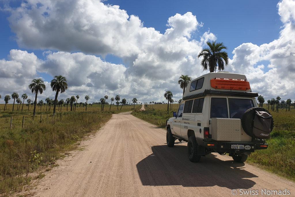 Nebenstrasse Uruguay Palmen