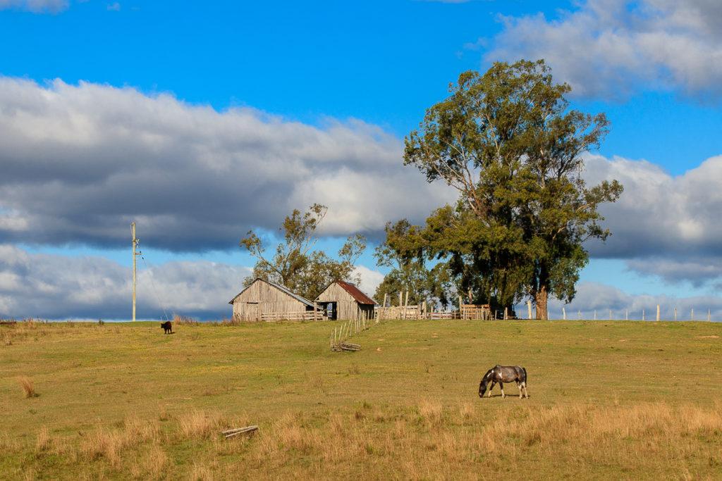 Uruguay Landschaft Norden