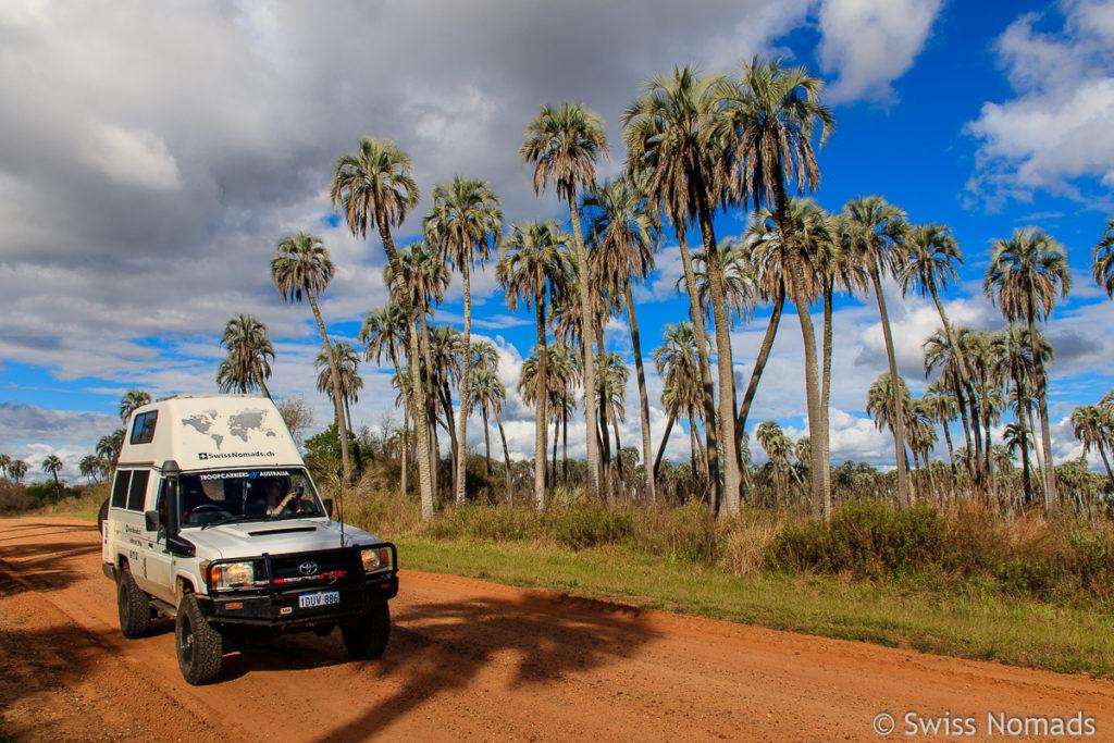 Parque Nacional el Palmar Argentinien