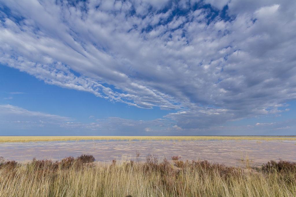 Landschaft im Etosha Nationalpark