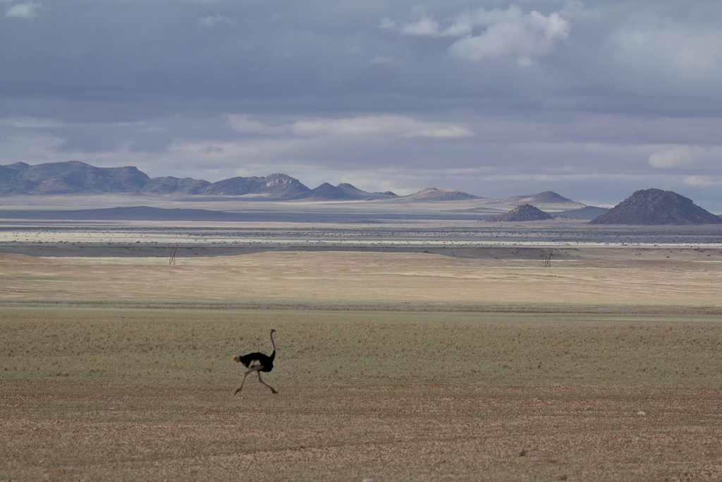 Weite Landschaft in Namibias Süden