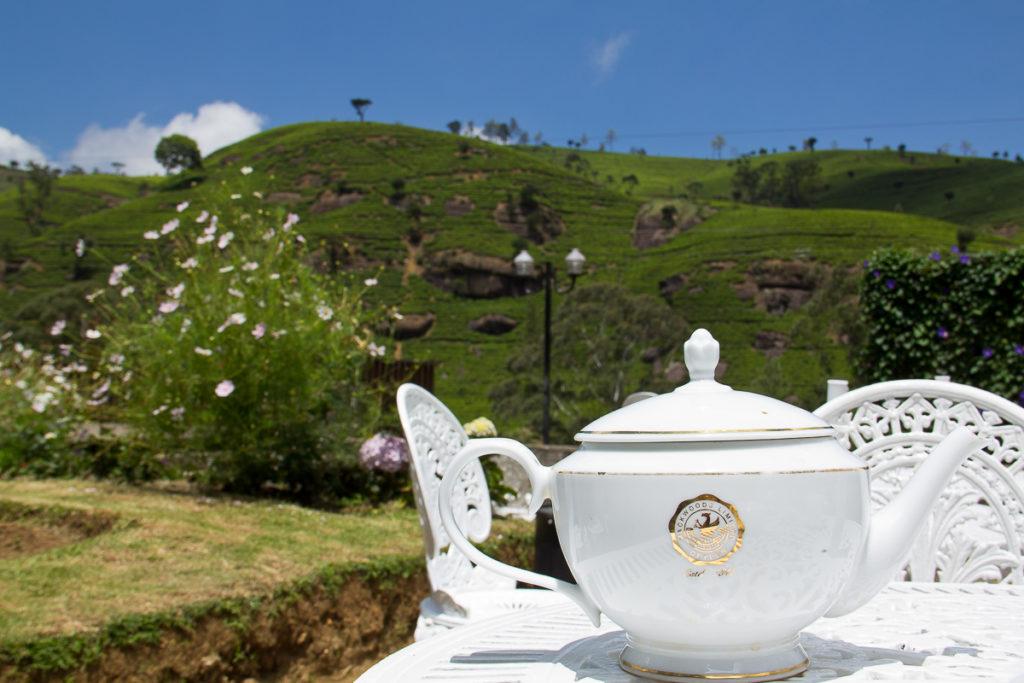 Teepause auf der Teeplantage Mackwoods in Nuwara Eliya
