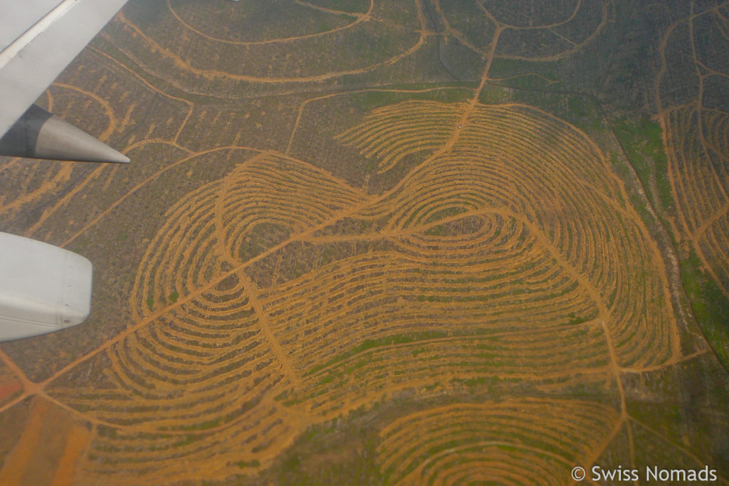 Borneo Luftaufnahme