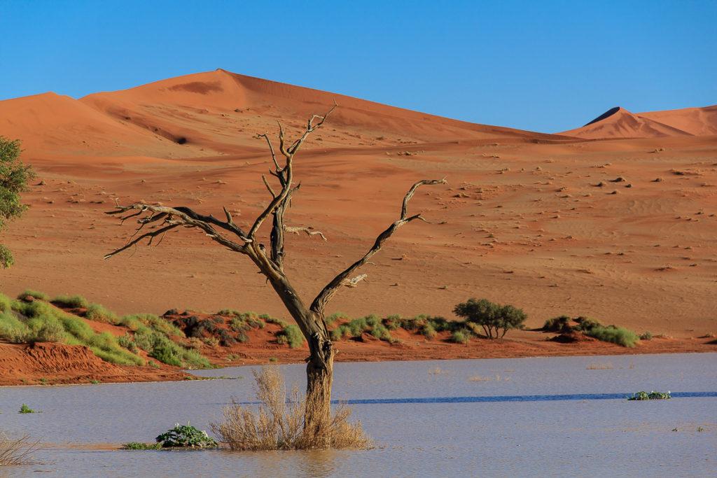 Sossusvlei ist einer der schönsten Ort in Namibias Norden