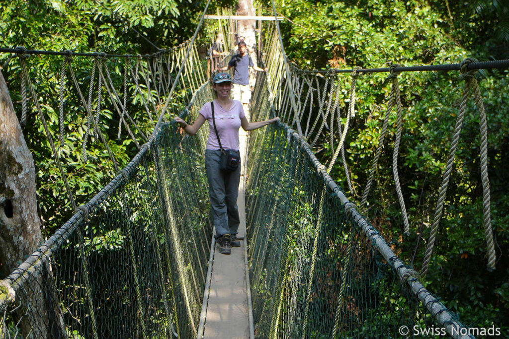 Canopy Walkway im Taman Negara