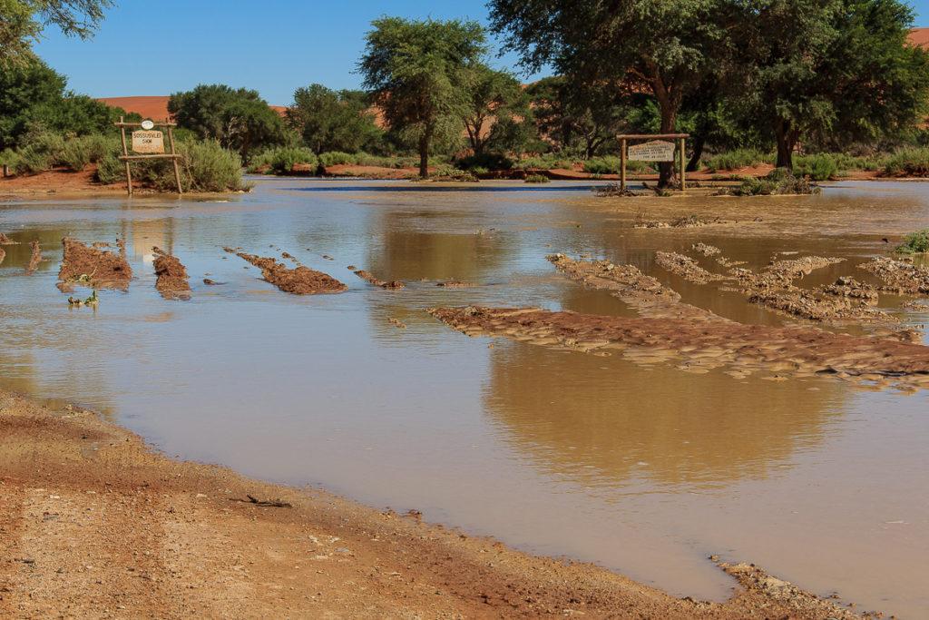 Zufahrt zum Sossusvlei in der Namib Wüste