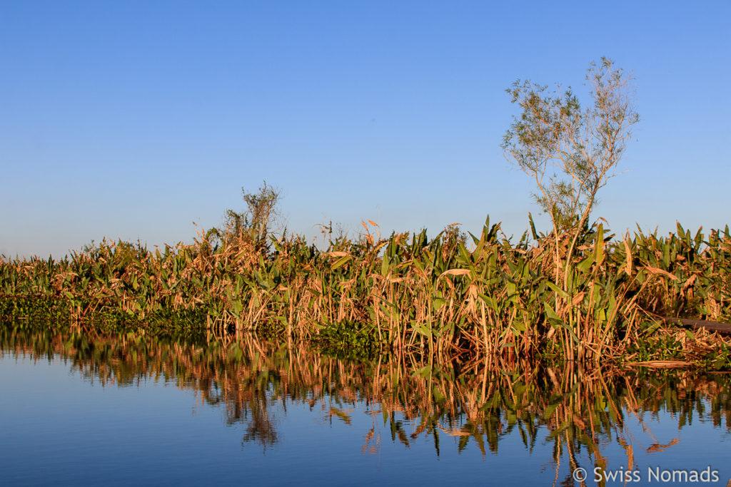 Landschaft bei der Laguna Blanca