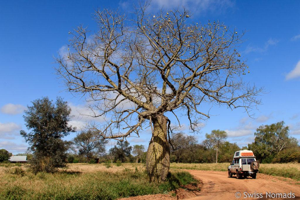 Paraguay Sehenswürdigkeiten mit dem eigenen Fahrzeug