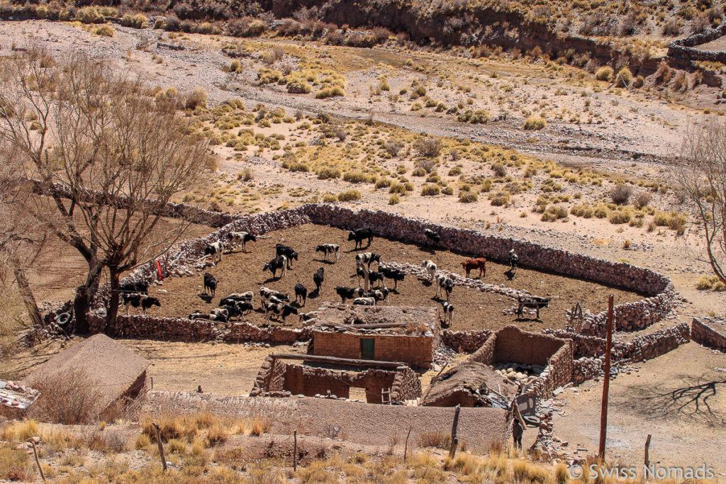 Adobe Bauern Siedlung in Nordargentinien