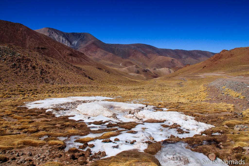 Schneefeld am Abra del Acay