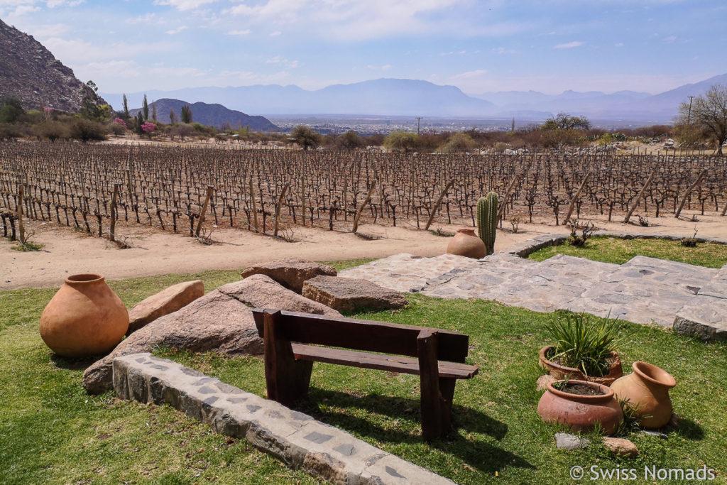 Cafayate Argentinien Weinanbaugebiet