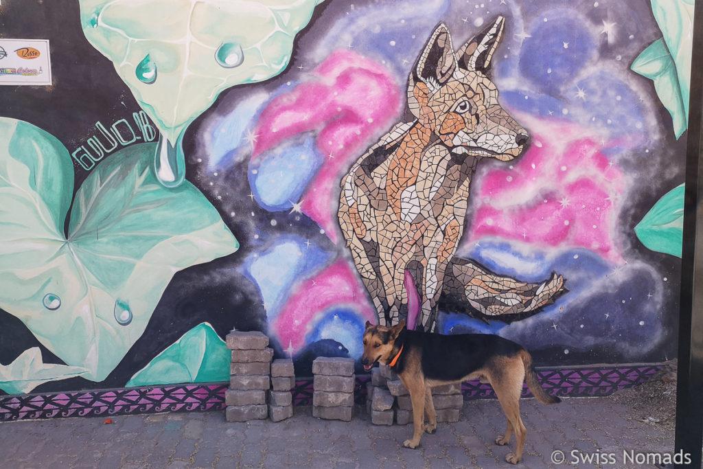 Street Art in Cafayate Argentinien