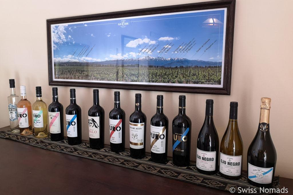 Weine von Ojo de Agua in Mendoza