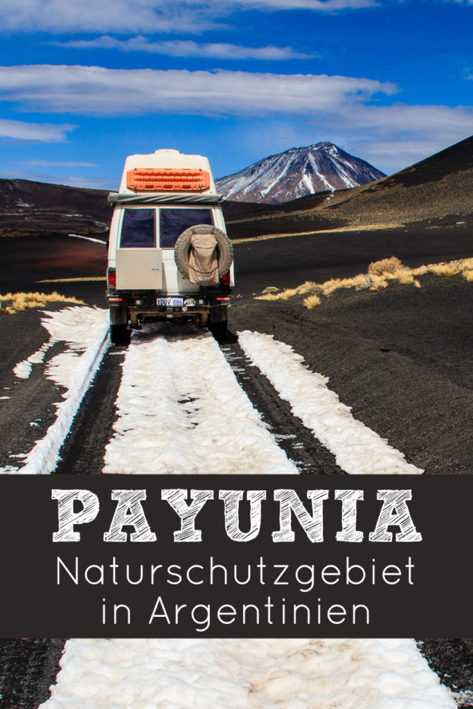 Payunia Naturschutzgebiet