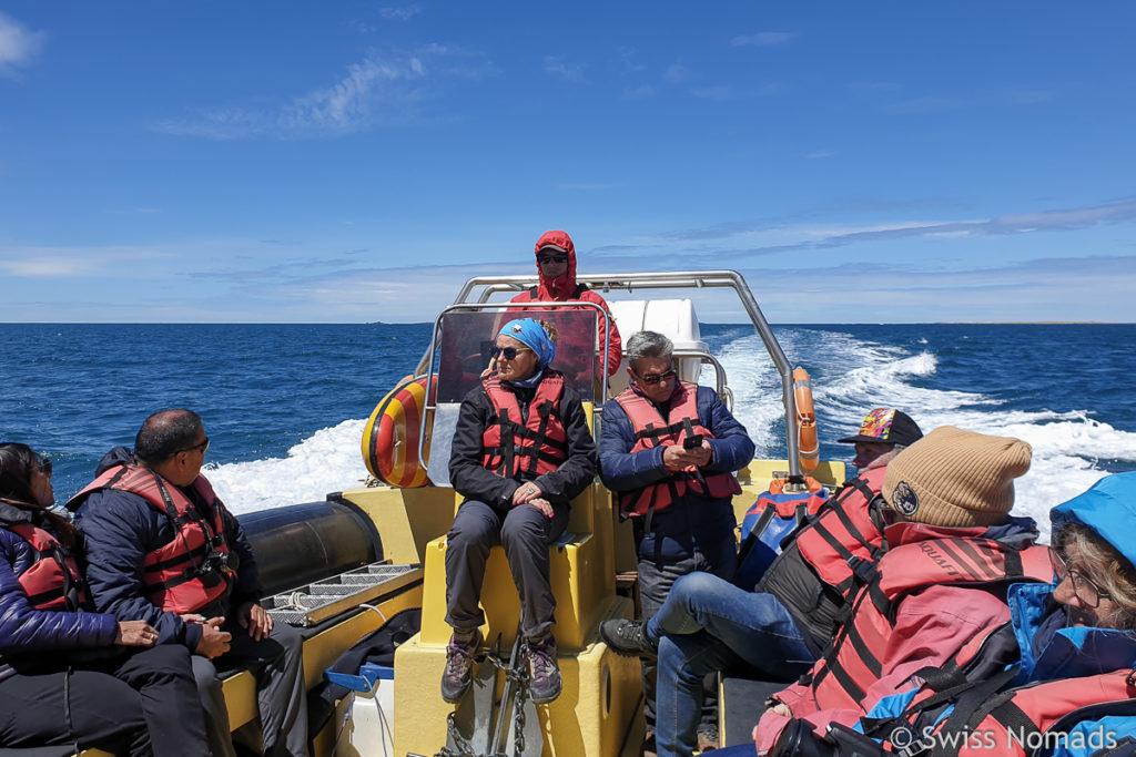 Bootsfahrt Puerto Deseado
