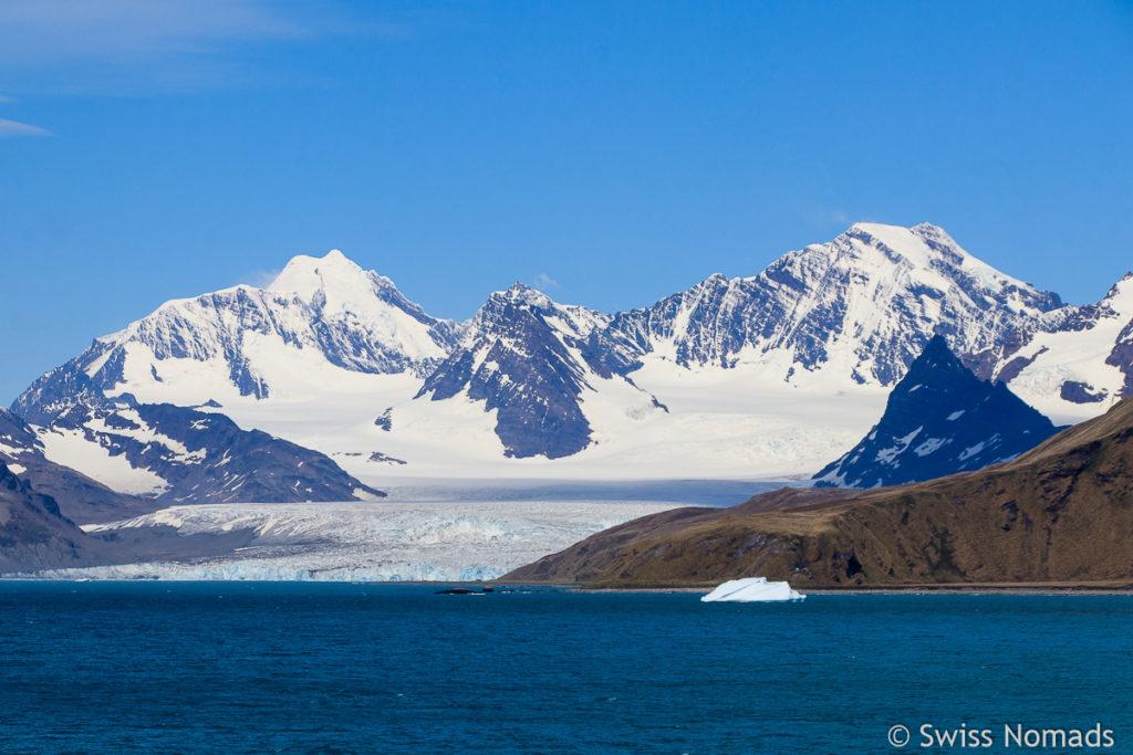 Gletscher in Südgeorgien