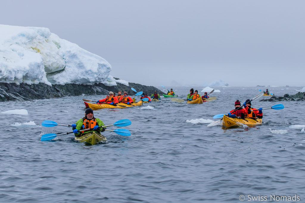 Last Minute Antarktis Kajaken