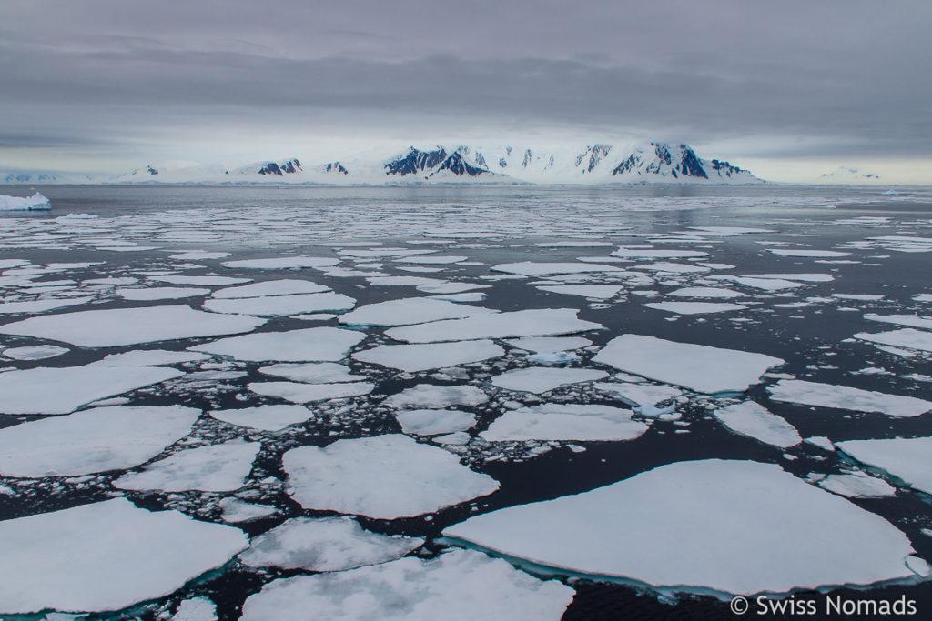 Eisschollen in der Antarktis